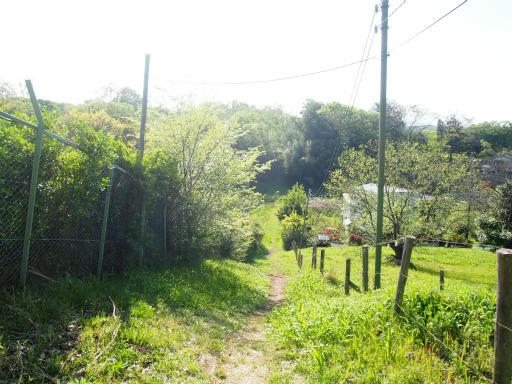 20170423・荒幡富士散歩20