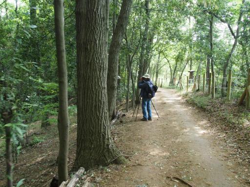 20170503・GW中の散歩1-08・トトロの森