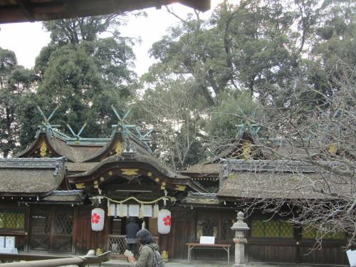 平野神社0001_2