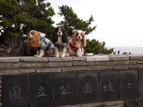門脇つり橋3