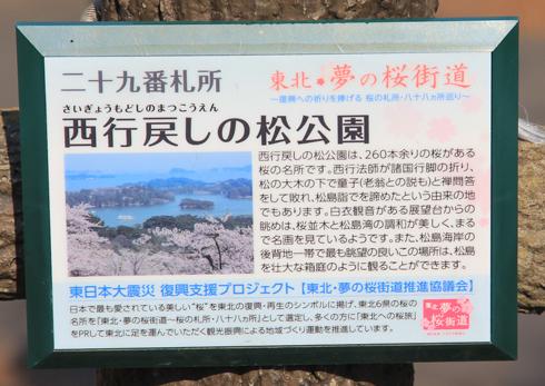 松島展望台2017-2