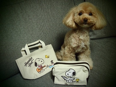 Snoopy 2017-03 (4)