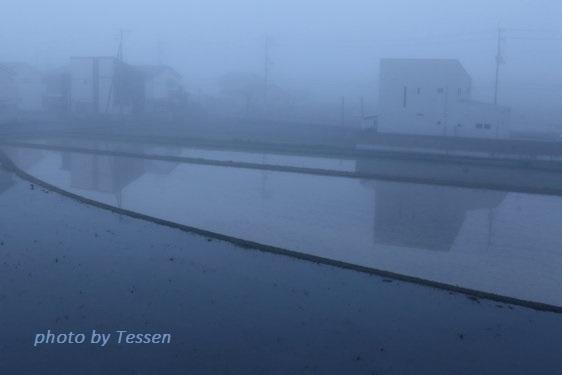 IMG_7088濃霧