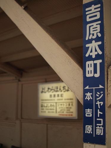P3218134.jpg