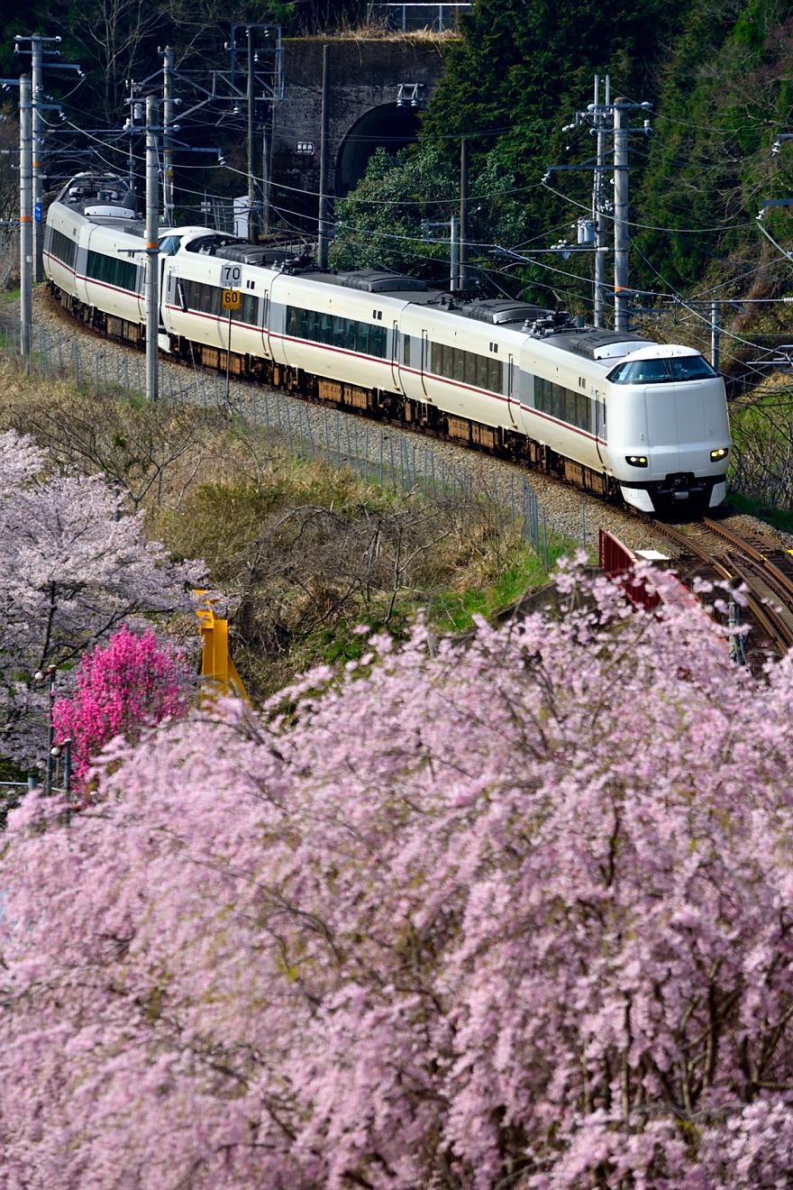 287系(5003М・日吉~船岡)2