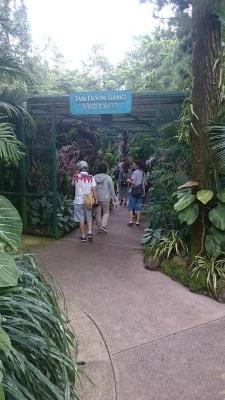 植物園19