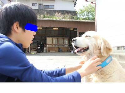 snap_tikagenoko414_201745232114.jpg