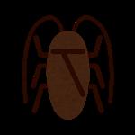 虫、ゴキブリ