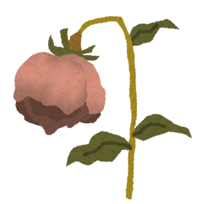 花、しおれ