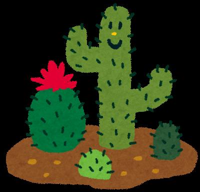 植物、サボテン