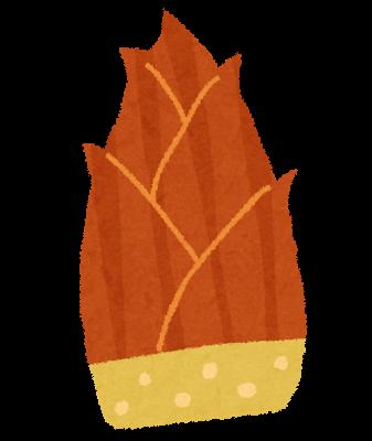 たけのこ、竹