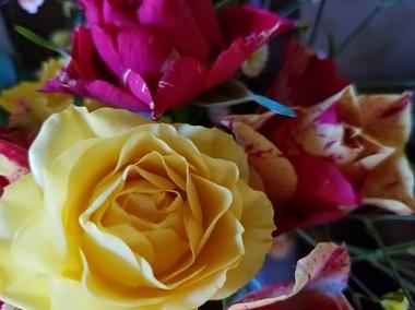 ジーターのお花5