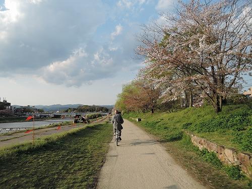 500鴨川サイクリング170419