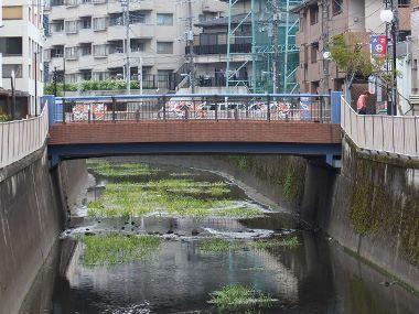 8関根橋0405