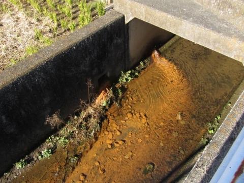 三之堀跡の排水溝