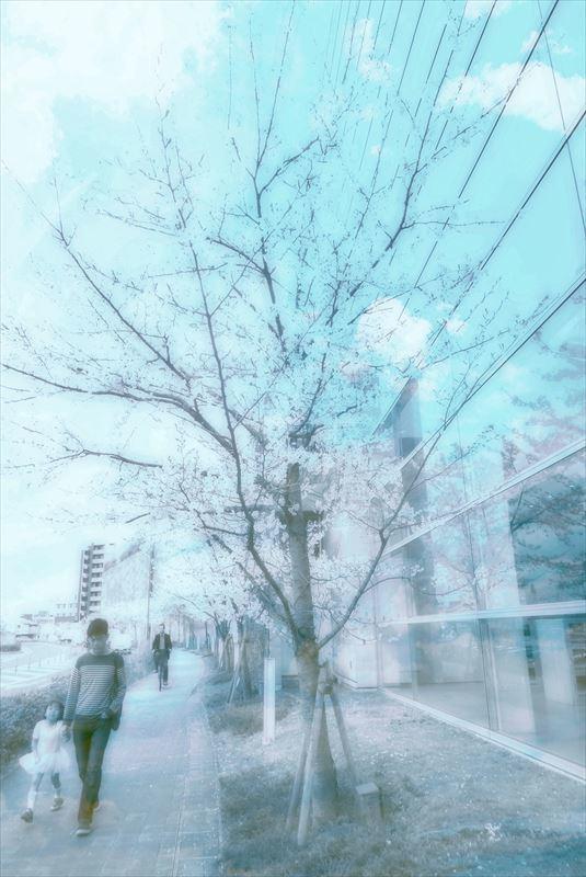 DSCN2529 (2)_Fotor_R
