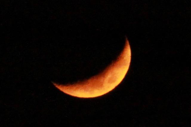 moonpapa.jpg