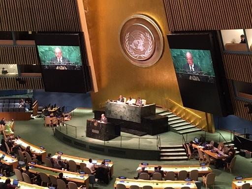40 国連 藤森訴え かく