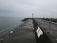 170303_神奈川釣旅03