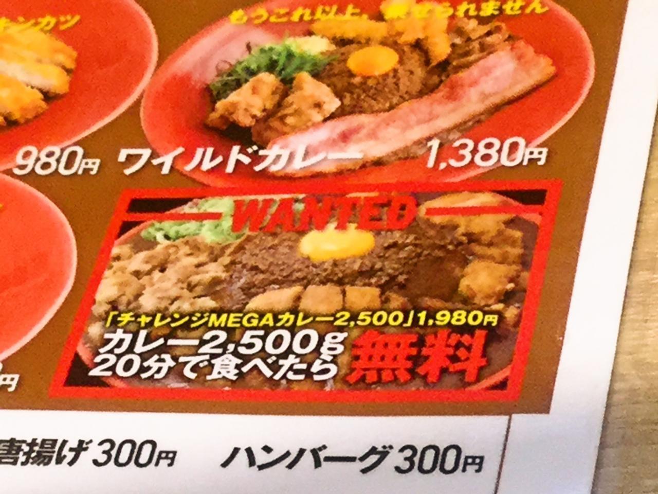 フジヤマドラゴンカレー秋葉原店(メニュー)