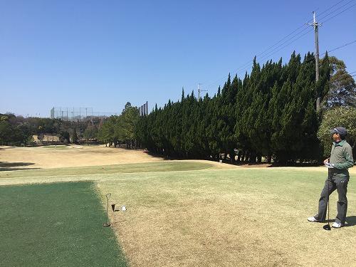 golf33-07.jpg