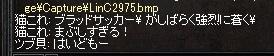 20170312_07.jpg