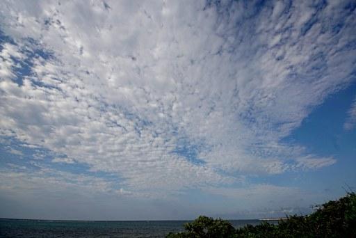 高積雲・西 DSC05899