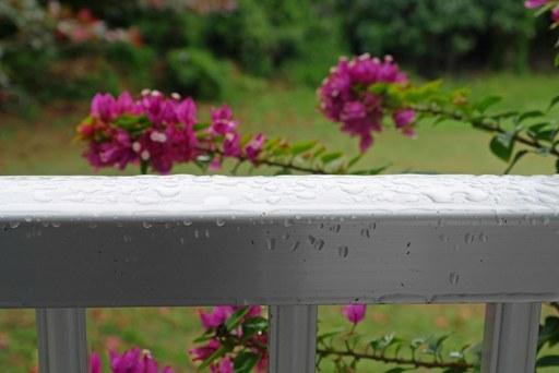 雨a P1080999
