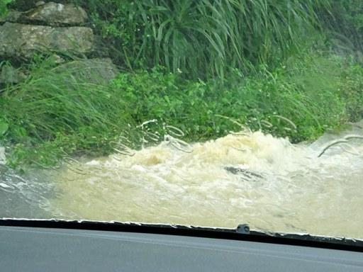 大雨通勤-f DSC07040
