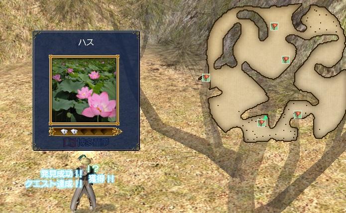 聖なる花(発見)