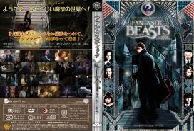 FantasticBeastDVDJ004.jpg