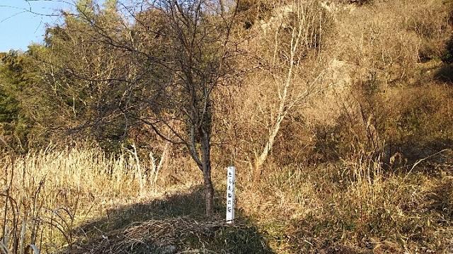 170215 軽部神社⑦ ブログ用