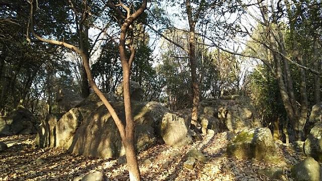 170308 操山、笠井山⑯ ブログ用