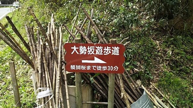 170420 醍醐桜② ブログ用