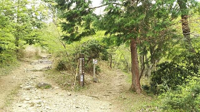 170503 那岐山~滝山① ブログ用