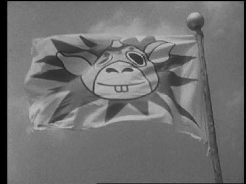 ブースカランドの旗