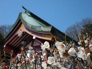 ashikaga11.jpg