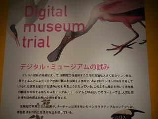daieshi41.jpg