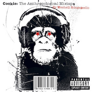 MESHELL NDEGEOCHELLO「COOKIE THE AUTHPOLOGICAL MIXTAPE」