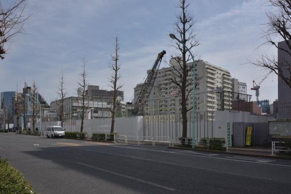 shibuya17030838.jpg