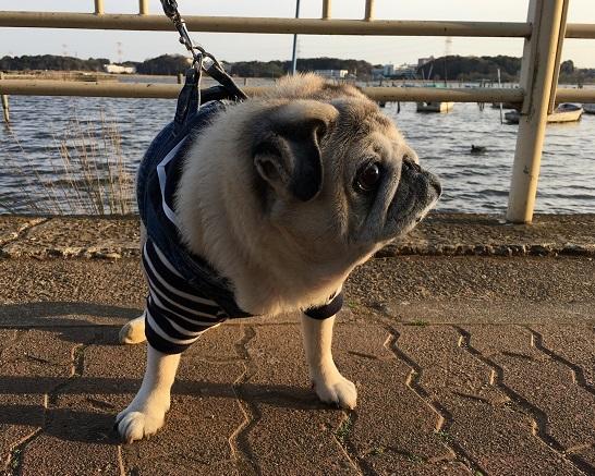 湖畔寒すぎた(-_-;)