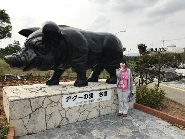 170308アグー豚