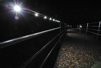リードパイプ誘導灯 夜間点灯①