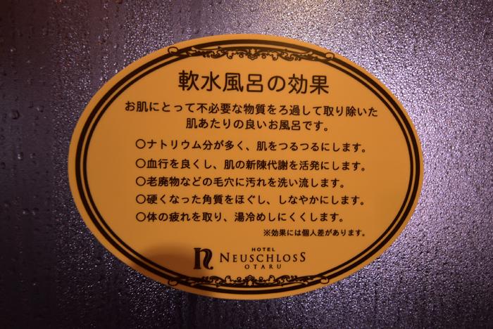 2017-02-01 ノイシュロス 024