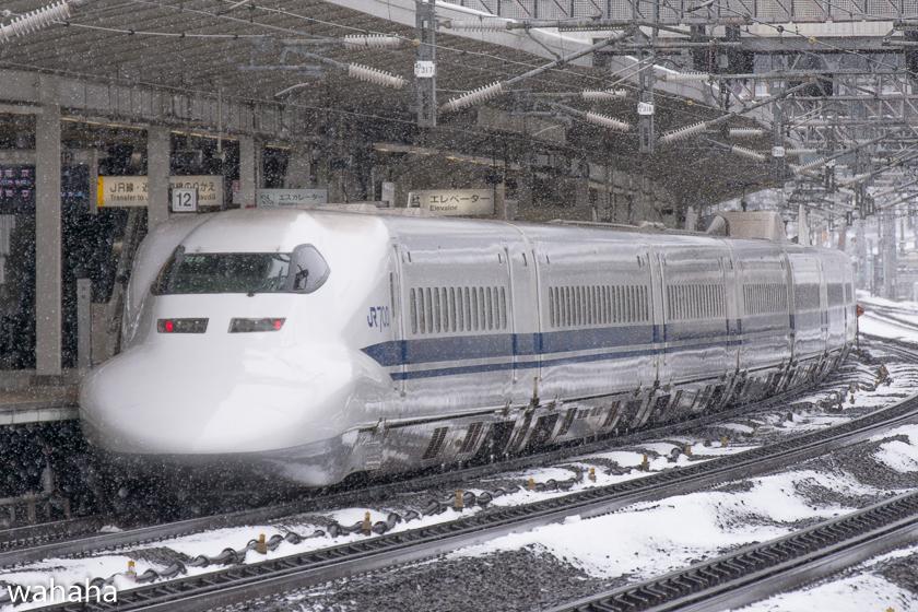 290211maibaraeki-21.jpg