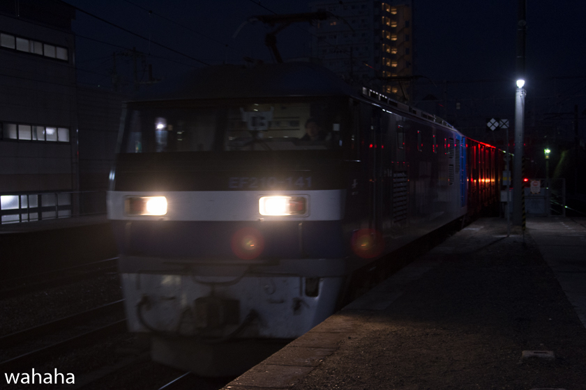 290218senohachi-04.jpg
