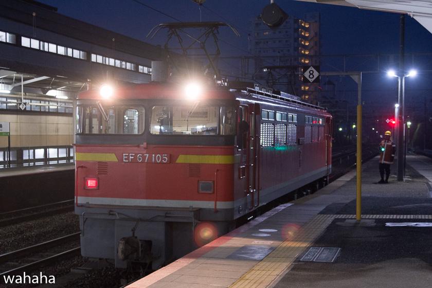 290218senohachi-12.jpg