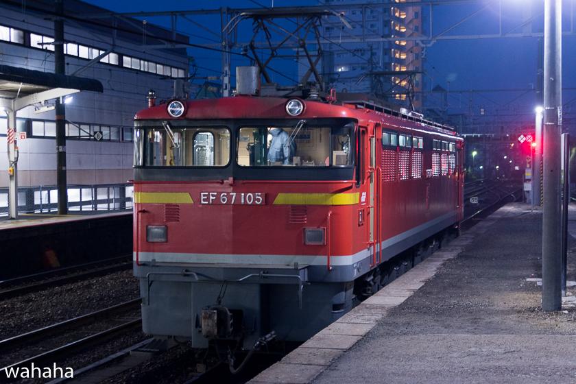 290218senohachi-13.jpg