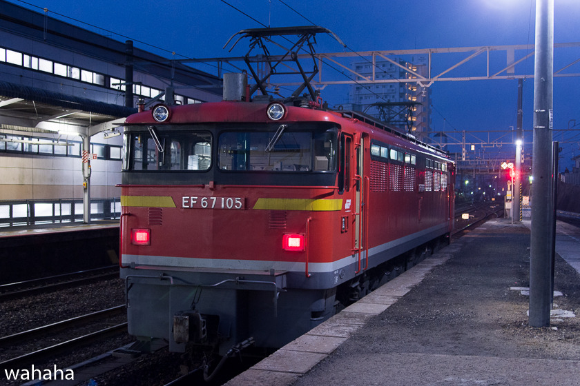 290218senohachi-19.jpg