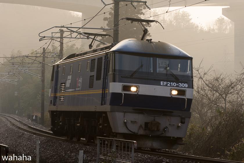 290218senohachi-31.jpg